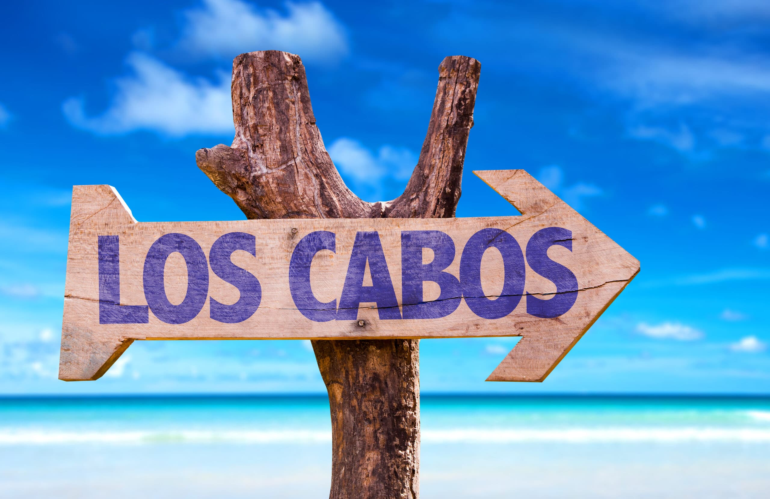 Grand Solmar Vacation Club Members Give Back to Los Cabos 2